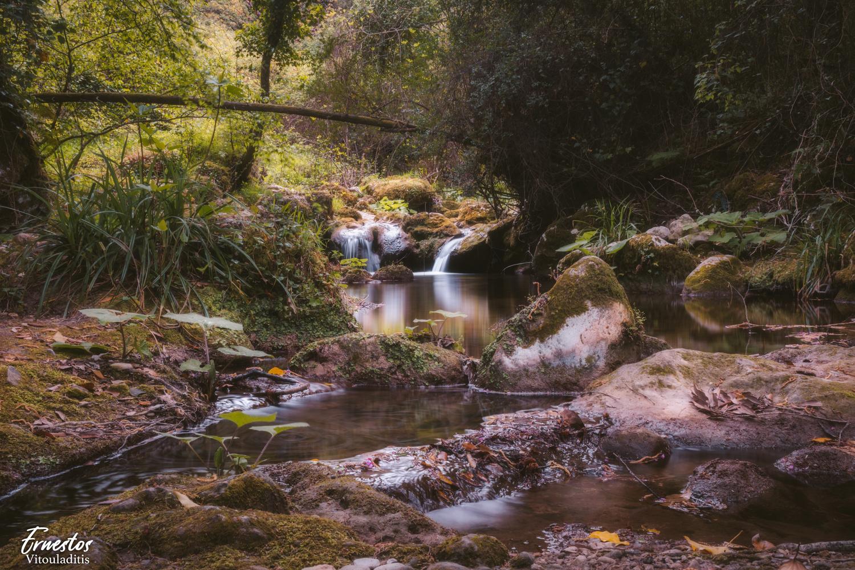 Nature Dreamy River by ernestos vitouladitis