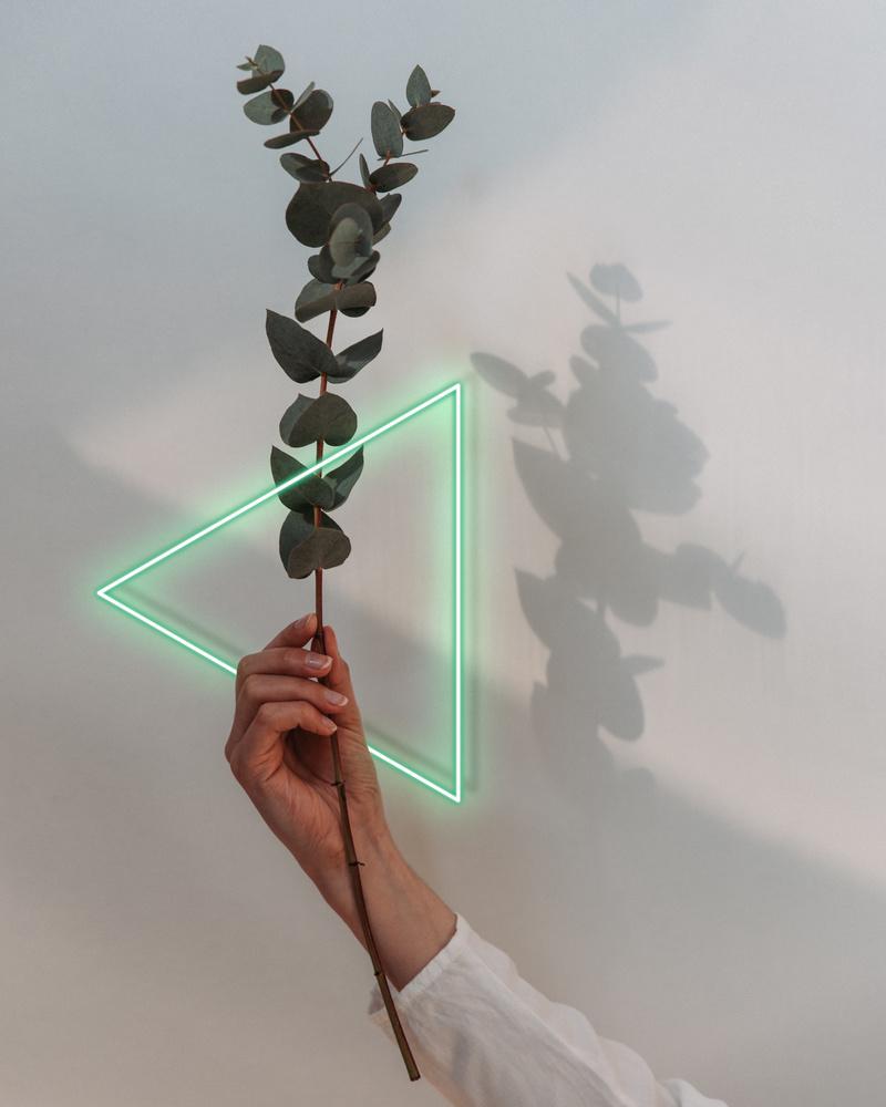 NEONFLOWER I by Renè Müller