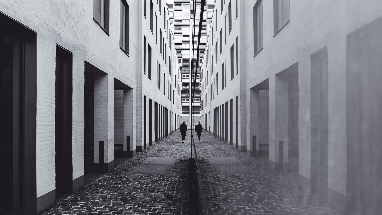 REFLECT by Renè Müller