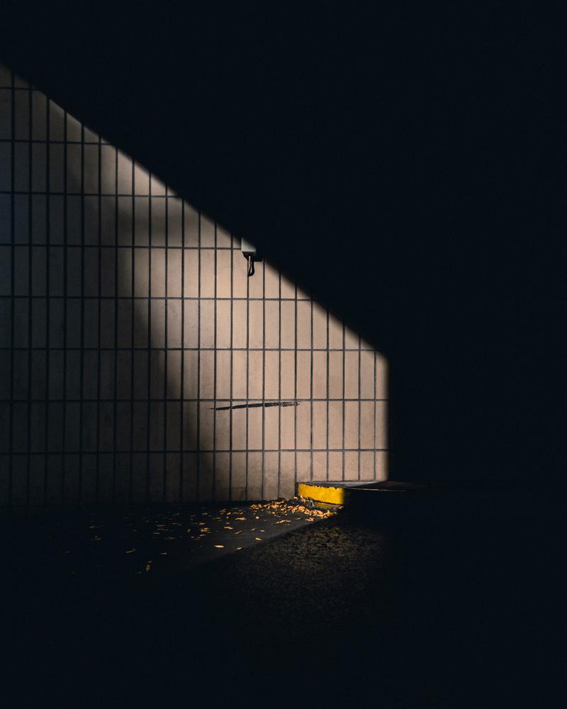 SUNSEEKER by Renè Müller