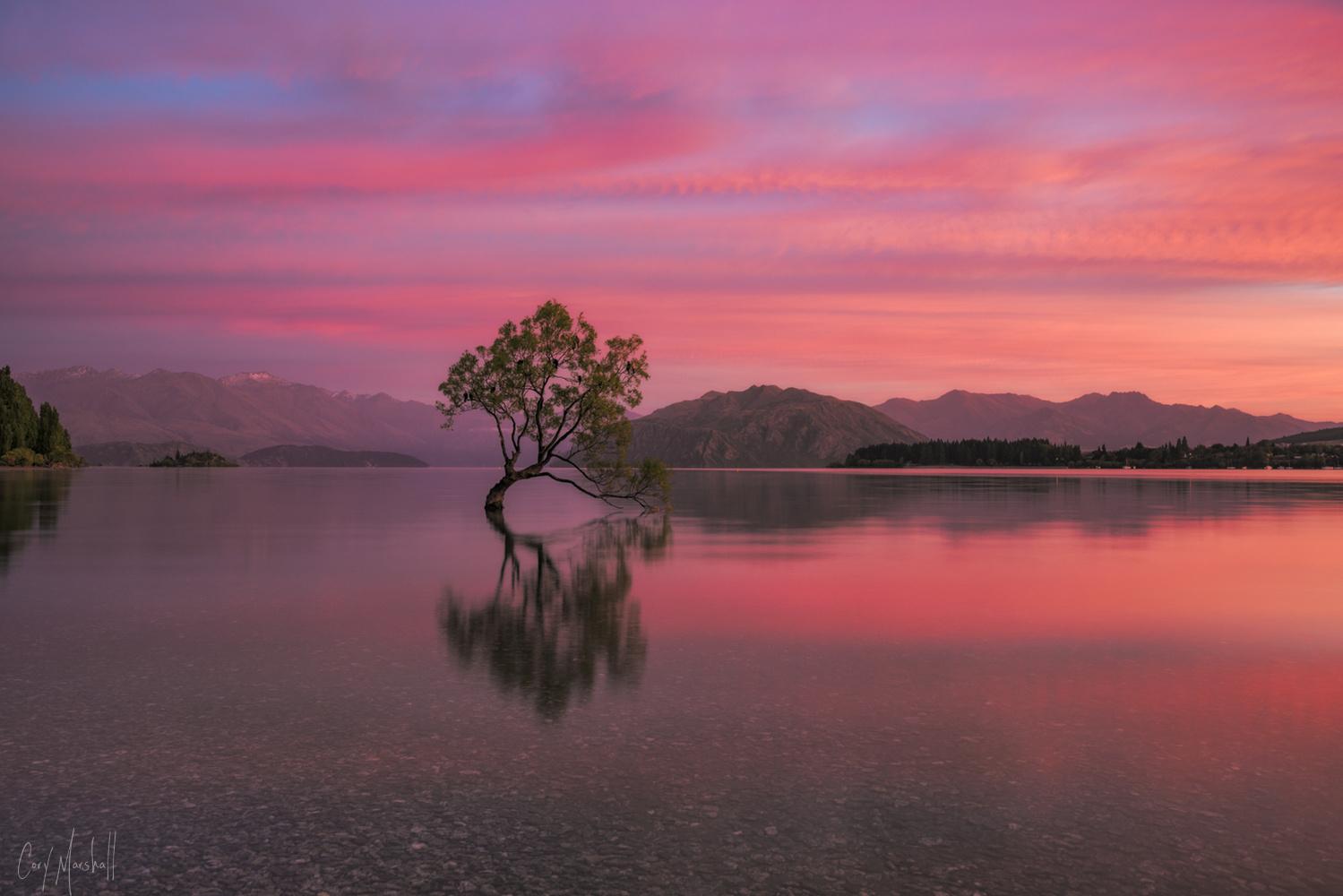 Wanaka Sunrise by Cory Marshall