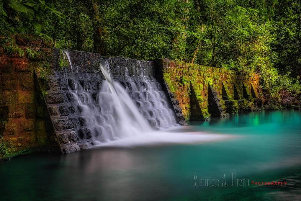Nature by Mauricio Urena