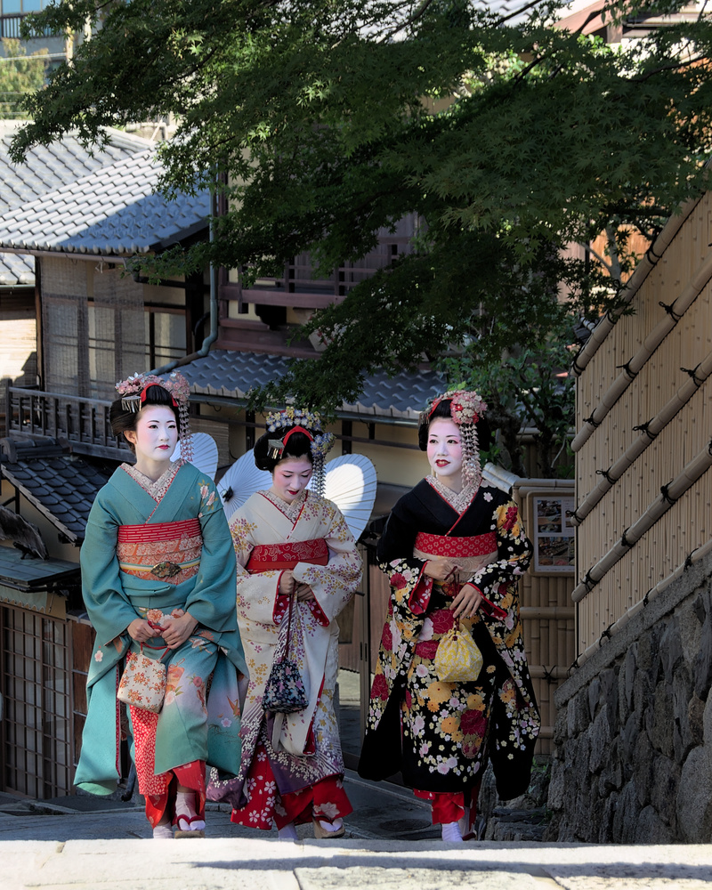 Japanise heritage by Andrea Mingaroni
