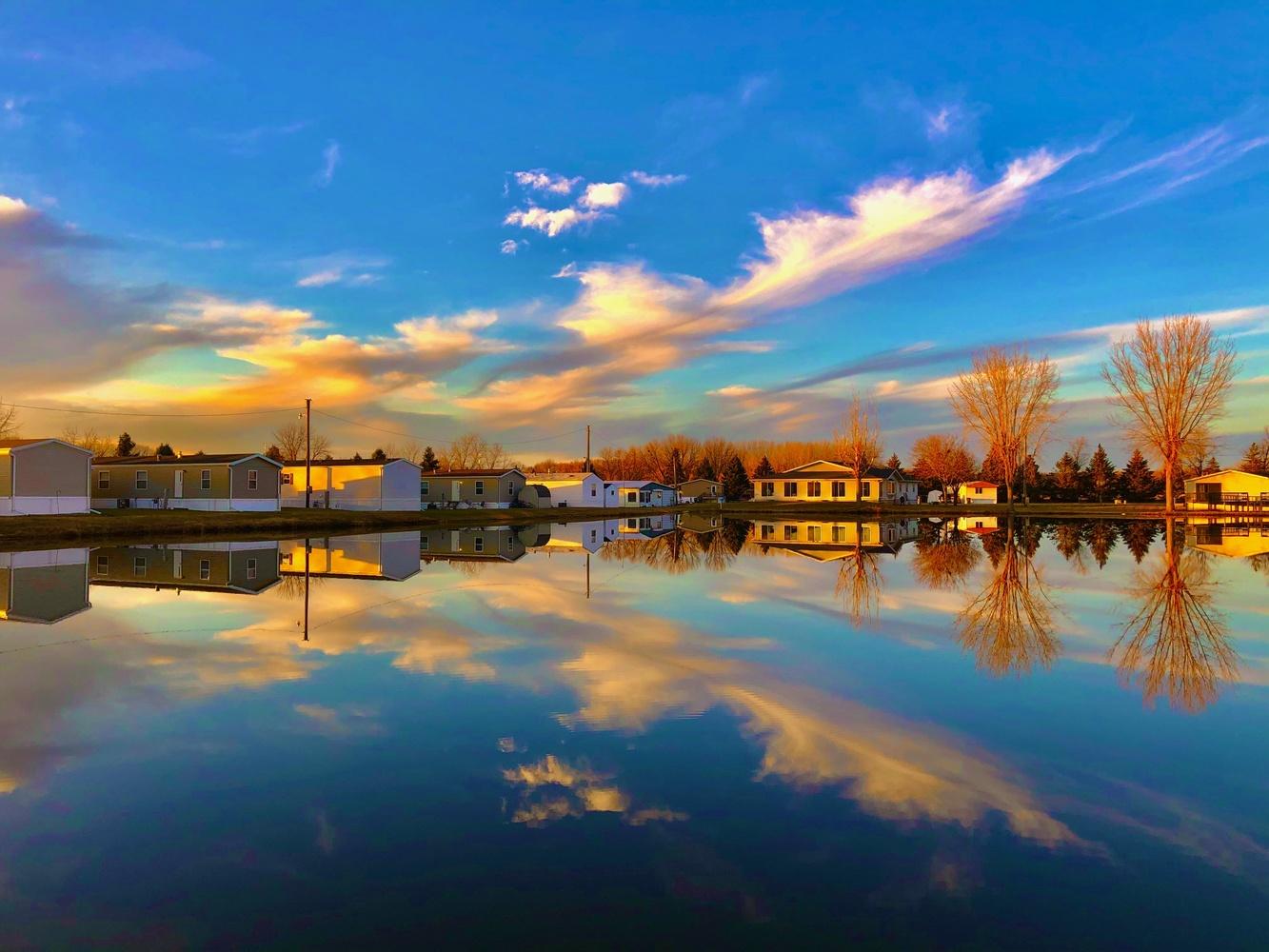 Pond by Dan Santema