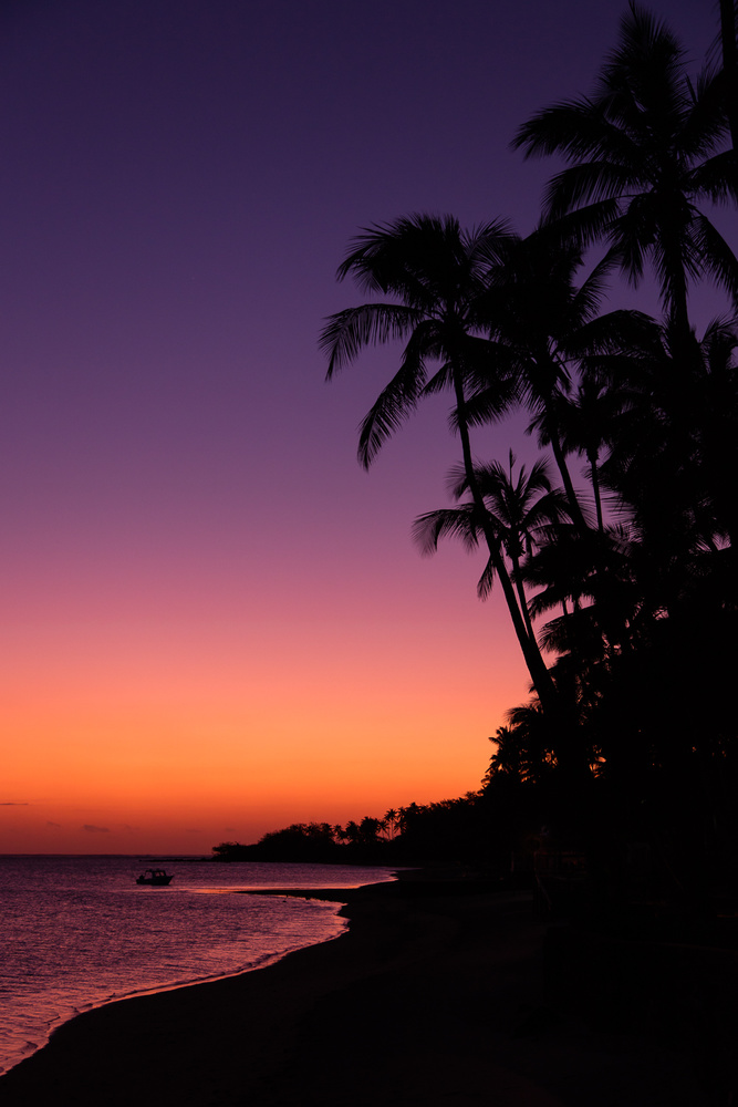 South Pacific Color by Rob Lace