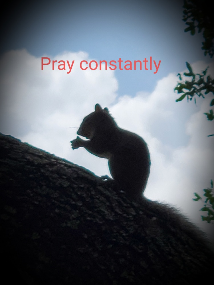 REMEMBER TO PRAY by Kathy DITTON