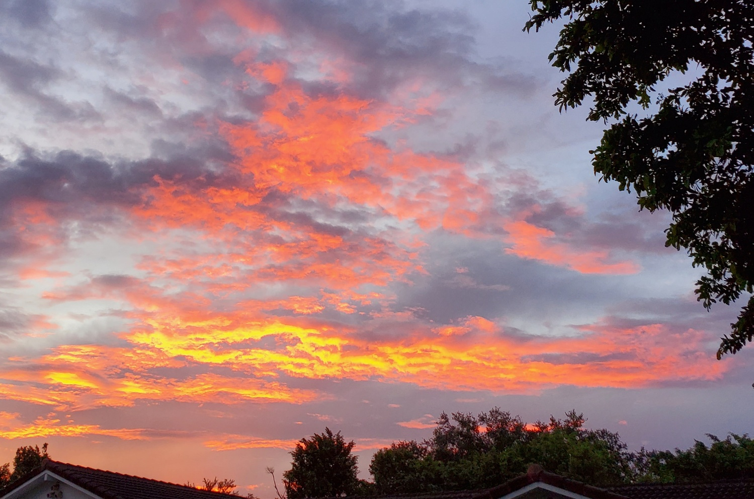 Sky on Fire by Kathy DITTON