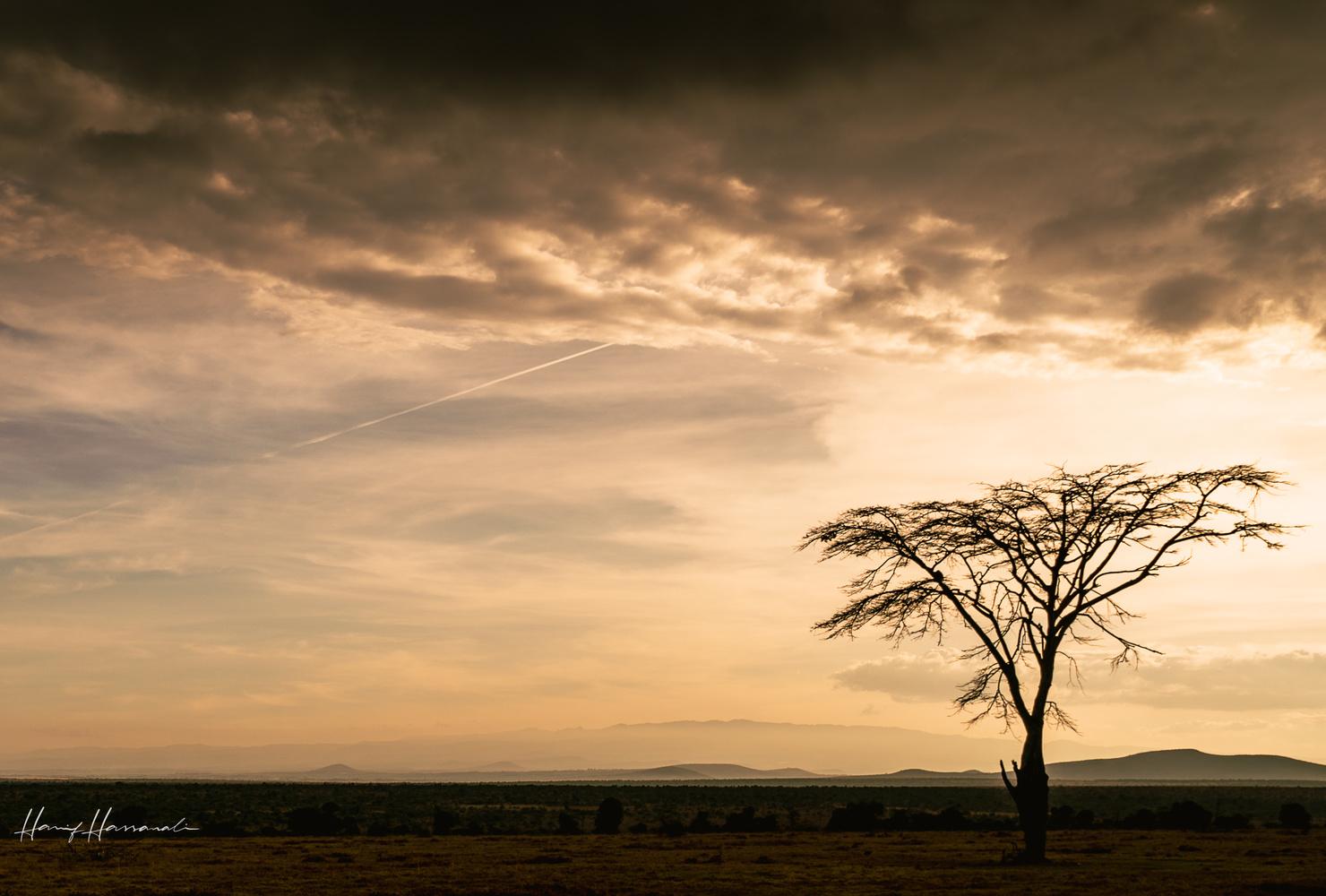 Ol Pejeta Sunset by Hanif H