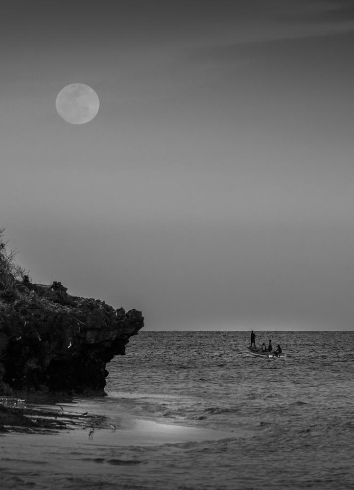 Moonlighting. by Hanif H