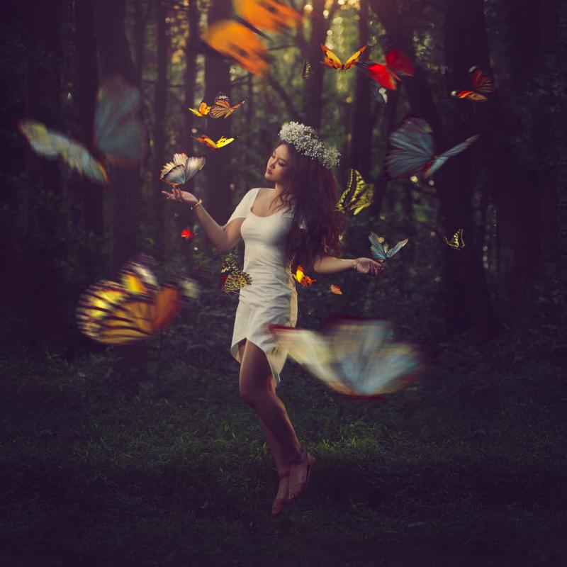 Metamorphisis by Savi You