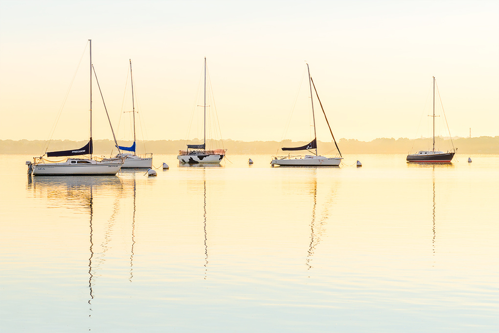 Mendota Sailboats At Sunrise by Ryan Mense