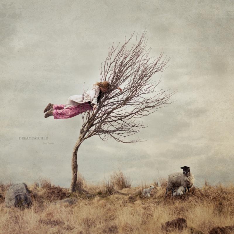 Dreamcatcher by Jen Brook