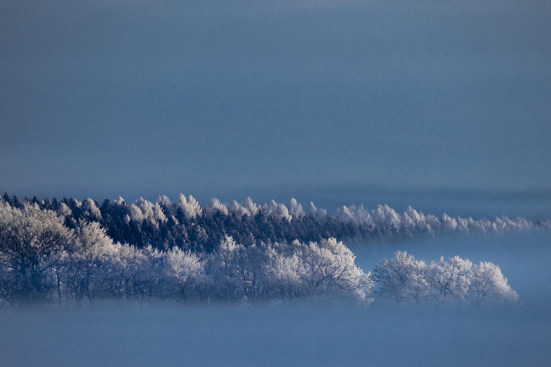 Winter Fog by Martin Weiss