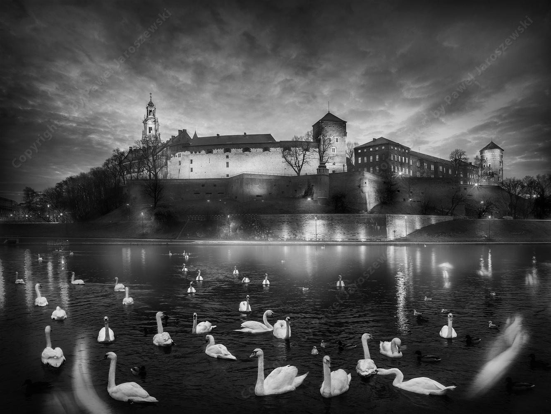Wawel Castle in Cracow City by Pawel Jaroszewski