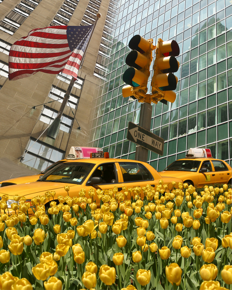New York Yellow by Karel de Gendre