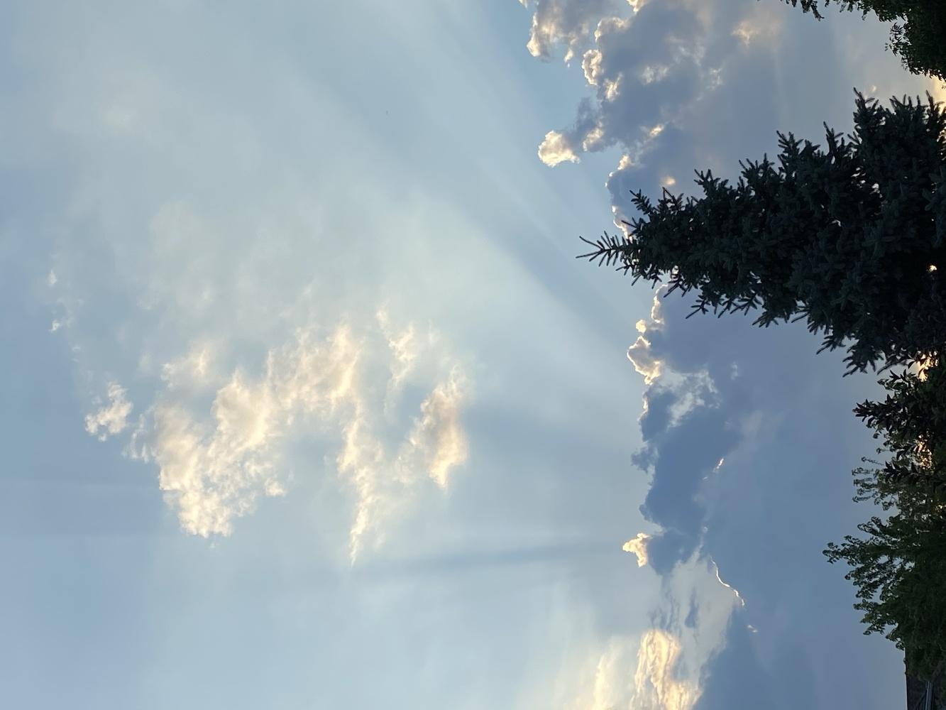 Sun breaker by Rohit Burra