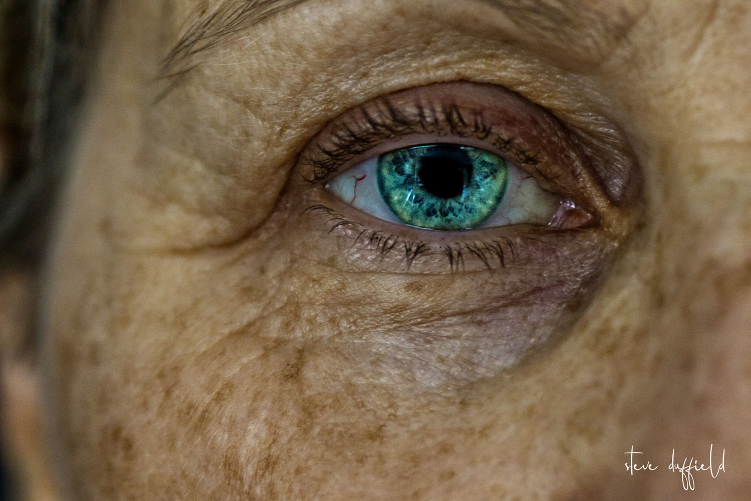 window to the soul by stephen duffield