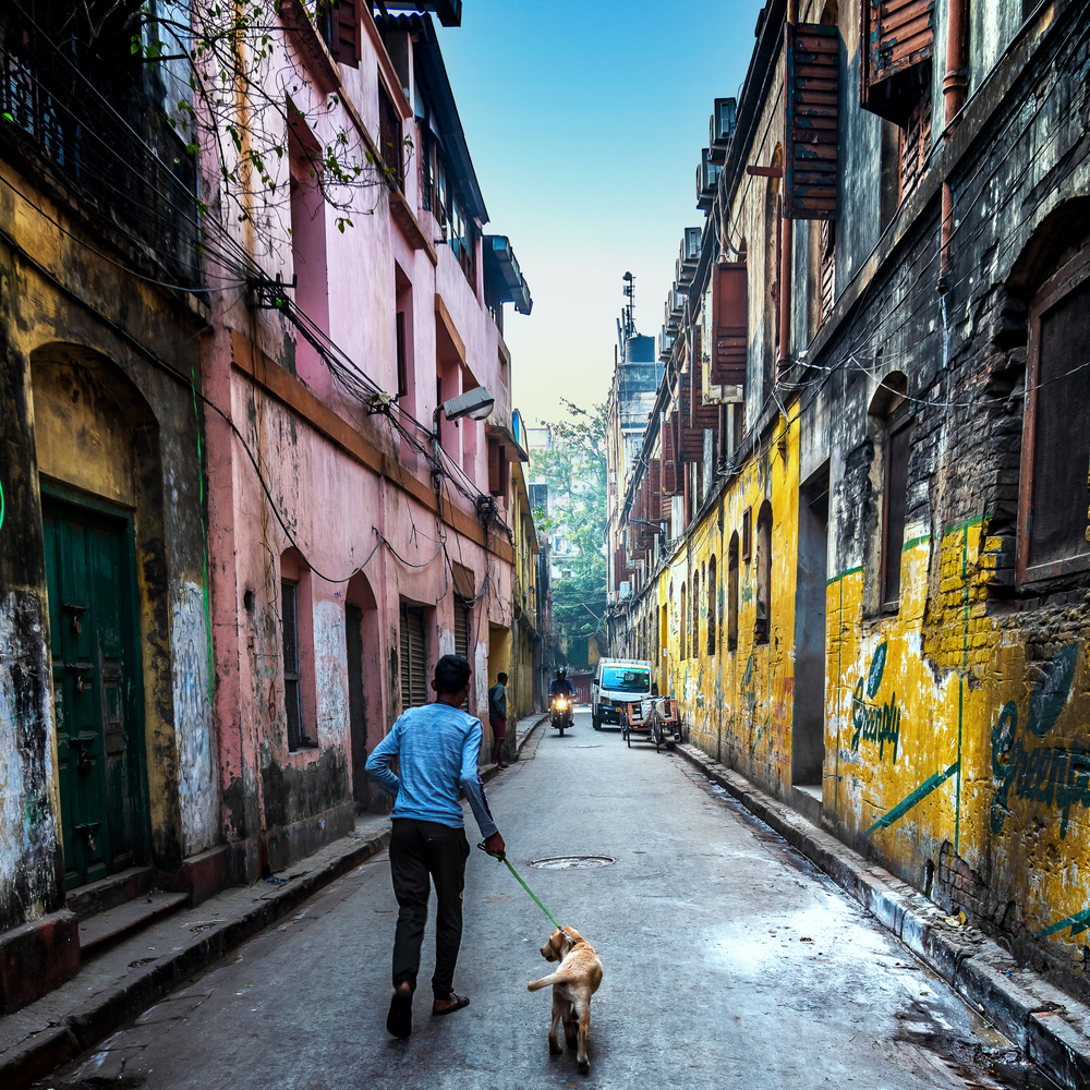The Boy With Dog by Ayan Bhattacharya