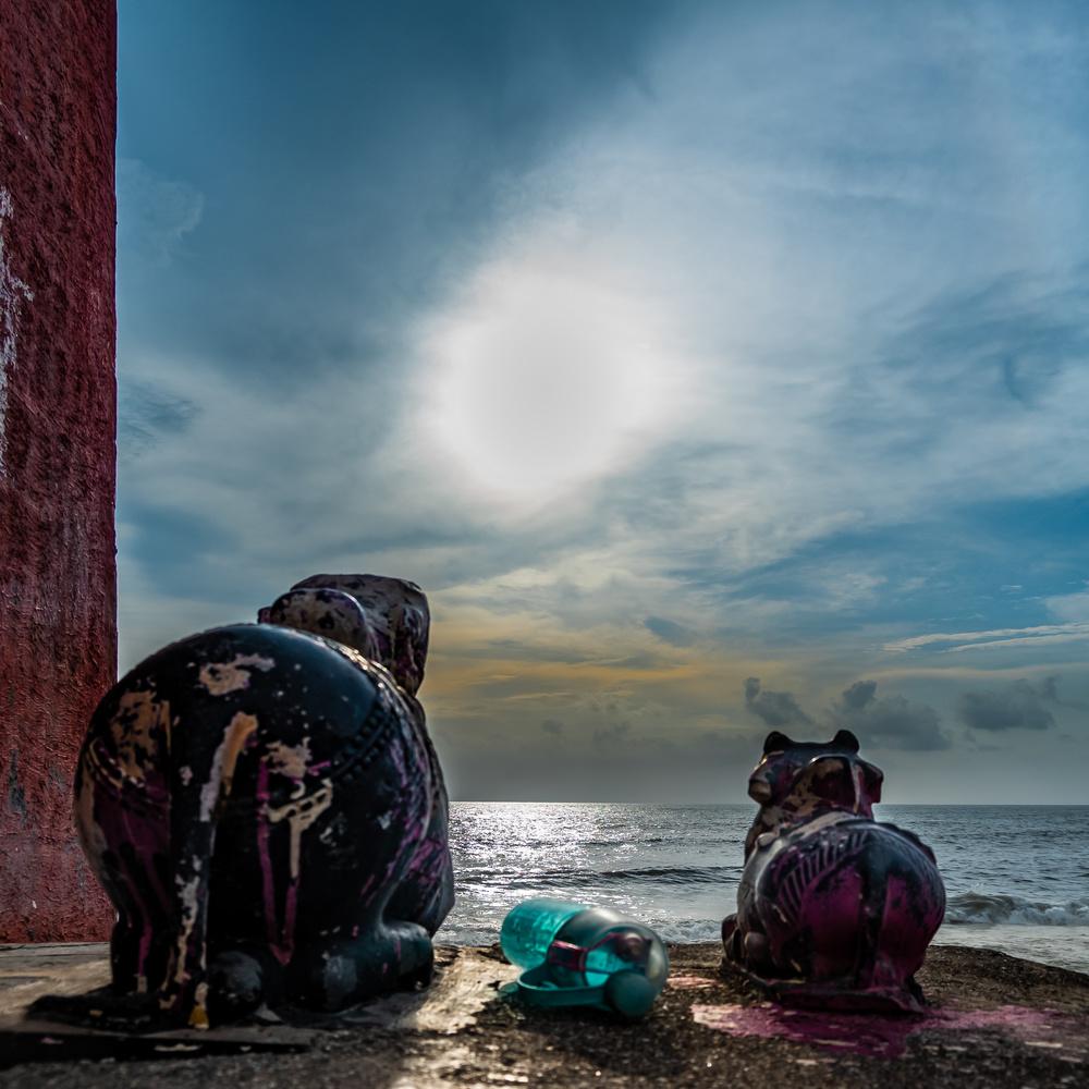 Nandi by Ayan Bhattacharya