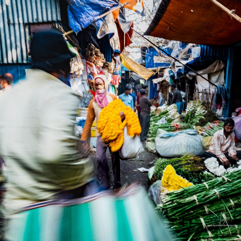 Movements of the Bazaar by Ayan Bhattacharya