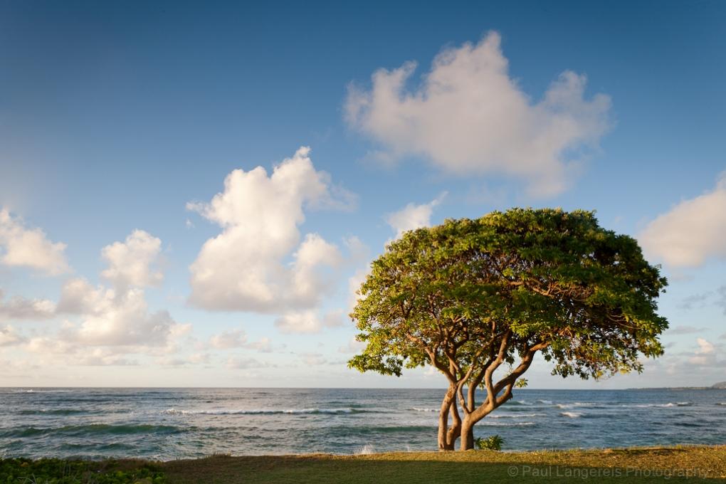 Kauai Sunrise by Paul Langereis