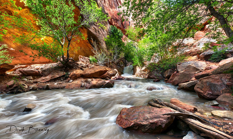 Kanarra Creek by Derek Brawdy