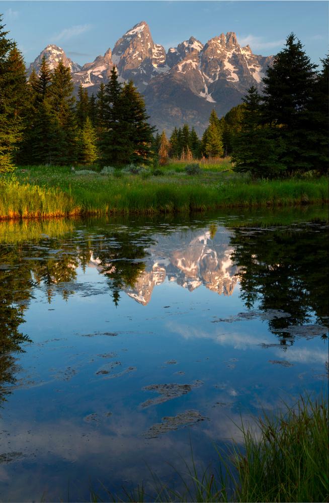 Glorious Morning by Derek Brawdy