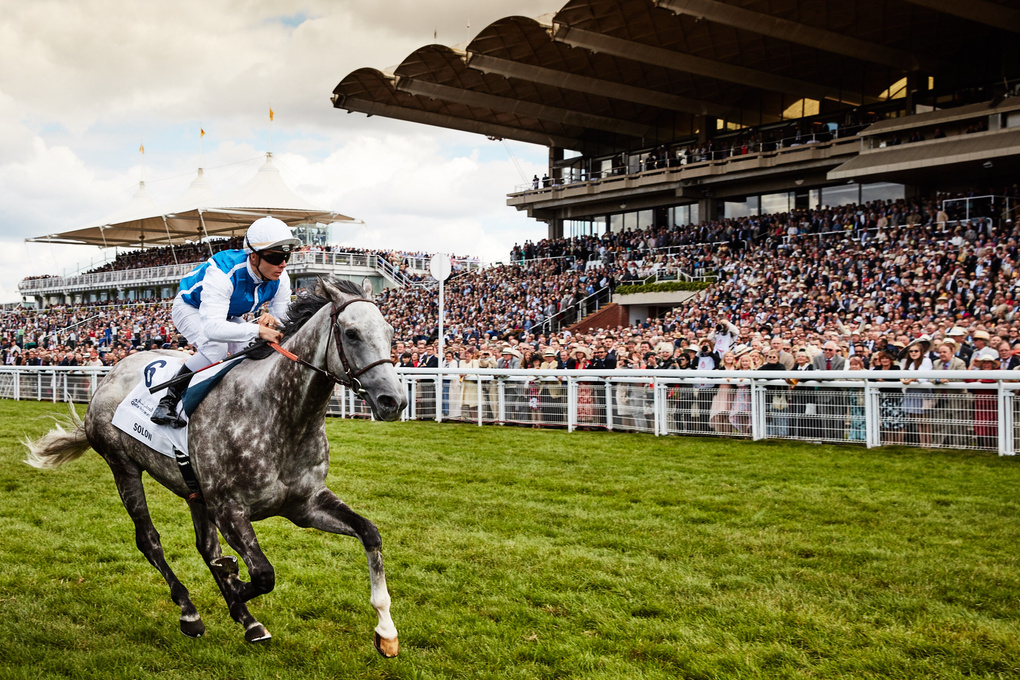 Solow winning the Sussex Stakes by Dominic James