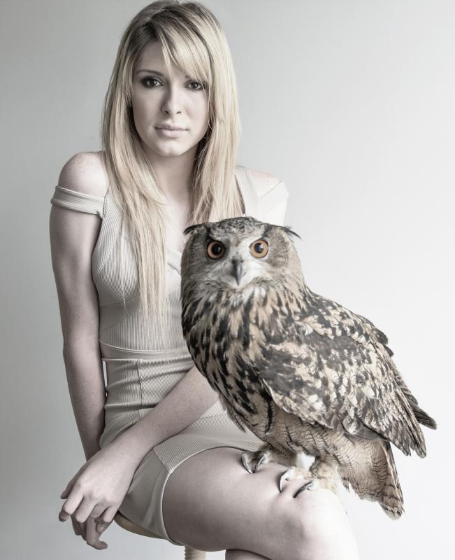 owl by Nick Viton