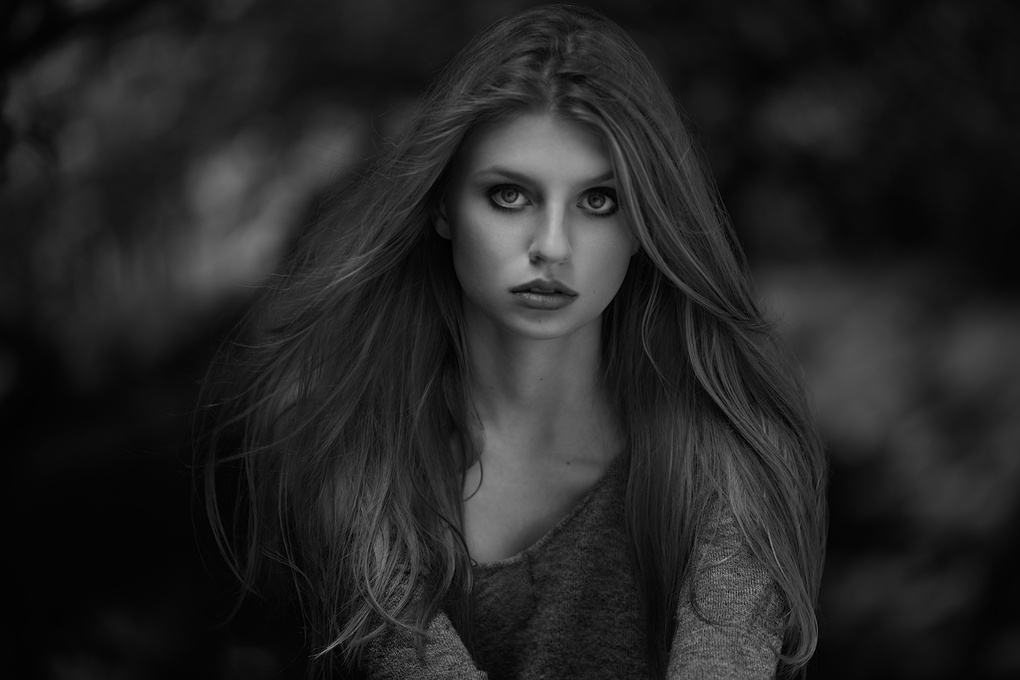 Hunter by Peter Coulson