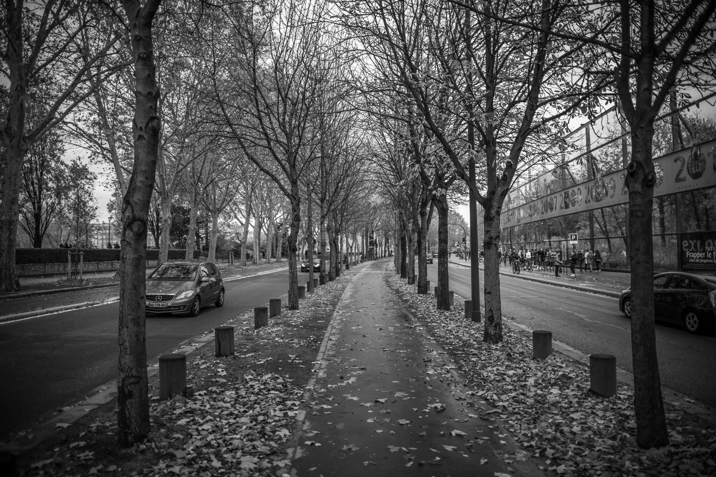 A Cold Paris by Jordan Miller