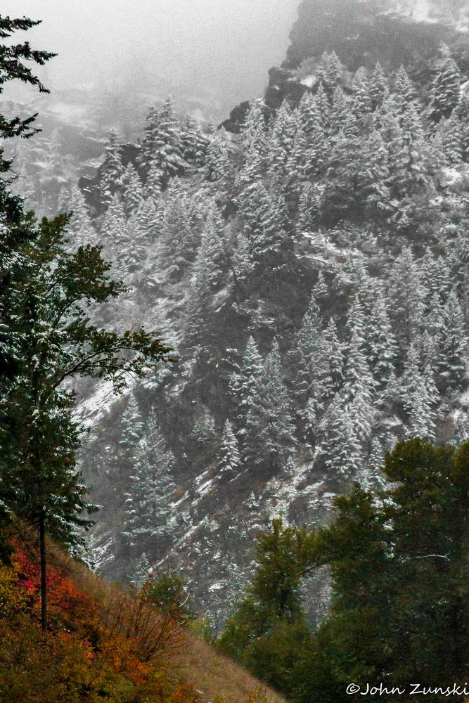 First Snow by John Zunski