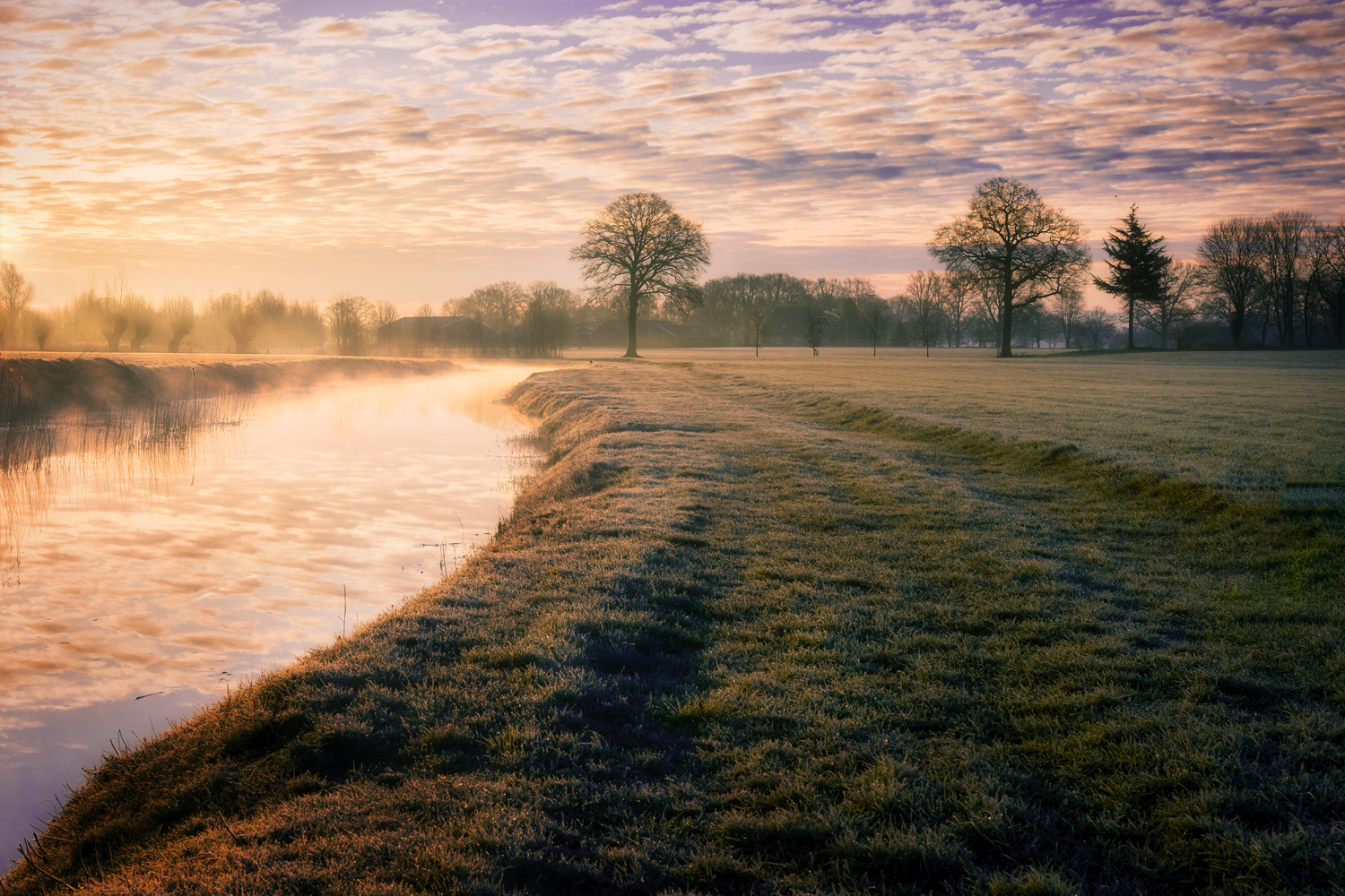 Sunrise over the meadows in the Netherlands by Jaimy Leemburg