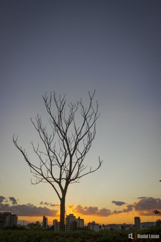 the sun in Braz by Daniel Lucas