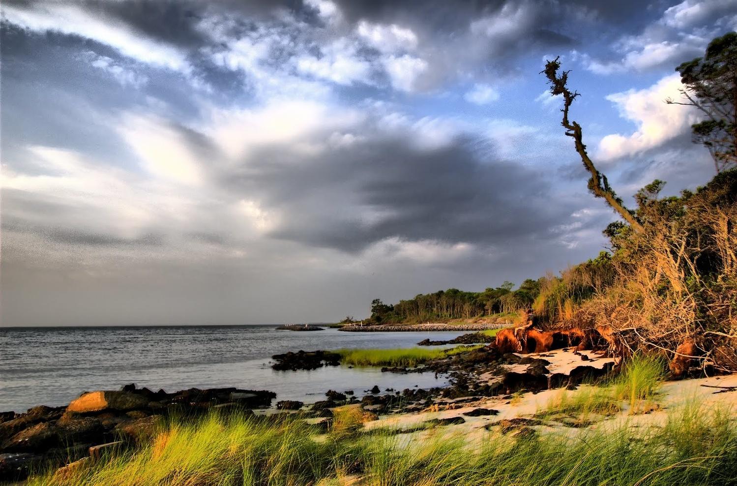 Shoreline by Stanley Westfall