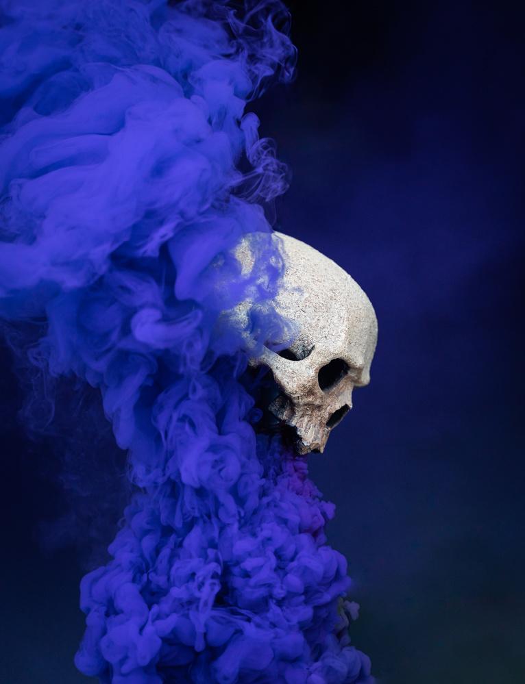 The skull by Antony Lajoie-beaudoin