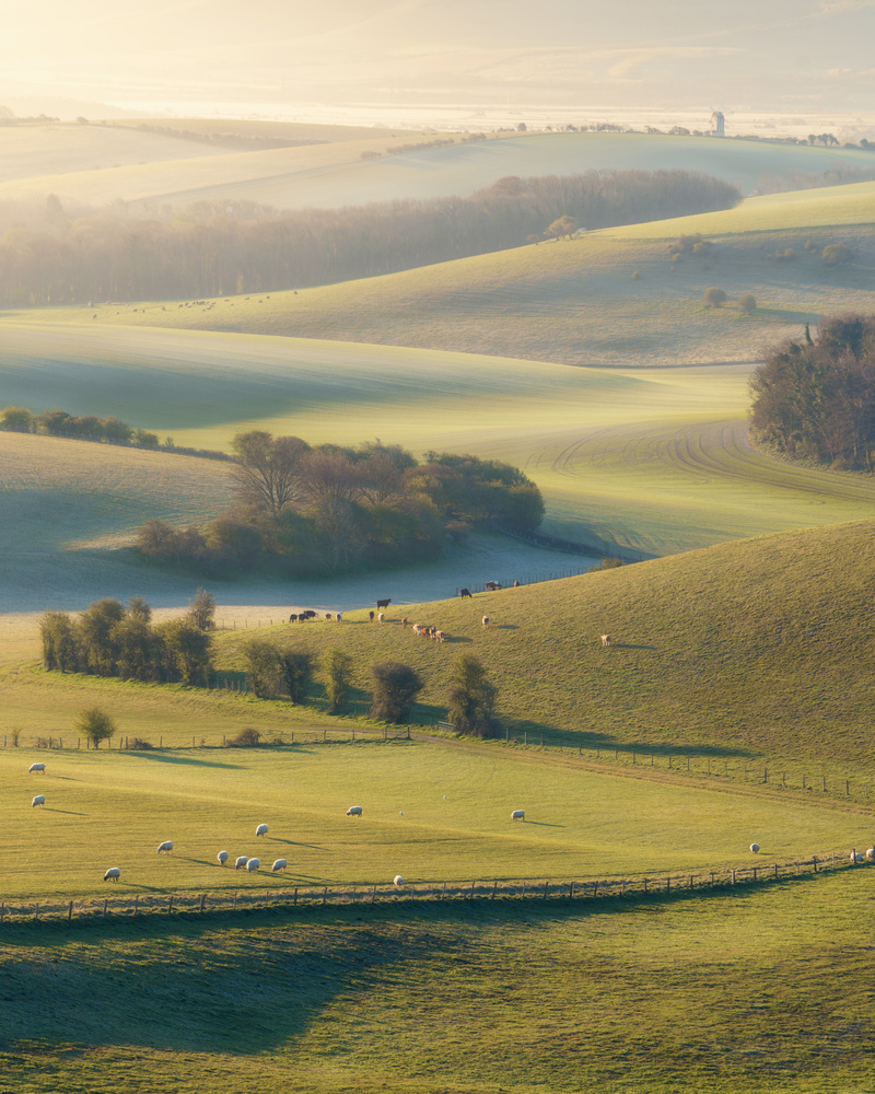 First light on the South Downs, UK by Phil Goddard