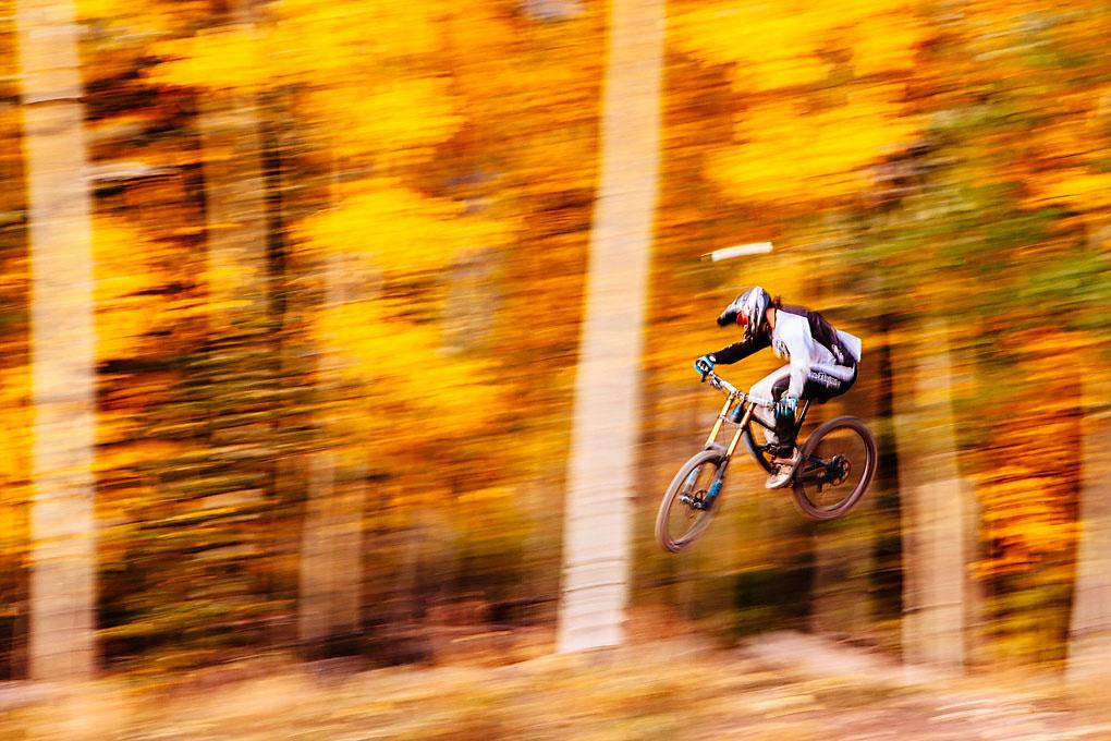 Flying through blazing aspens by Sean Slavin