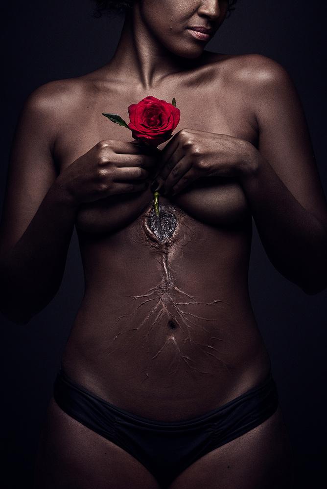Rooted Love by Dodô Villar