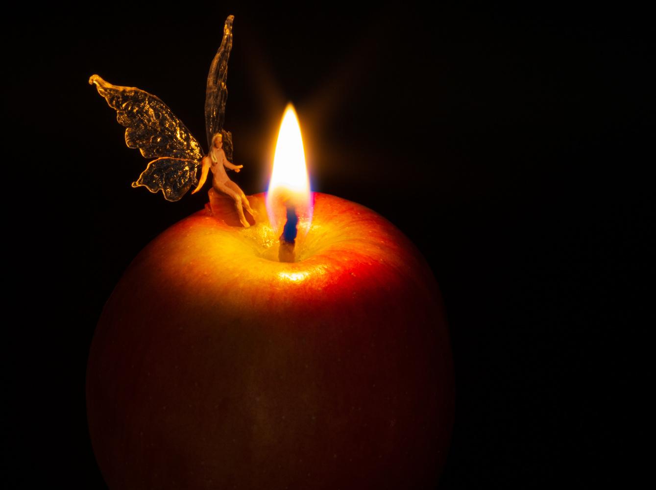 Fairy light by David Birozy