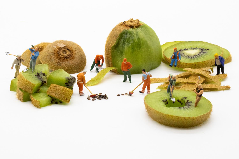 Deconstructing a kiwi by David Birozy