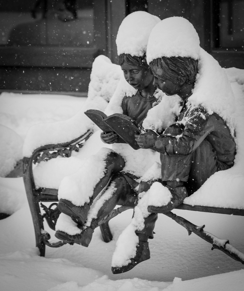 Reading in the snow by David Birozy
