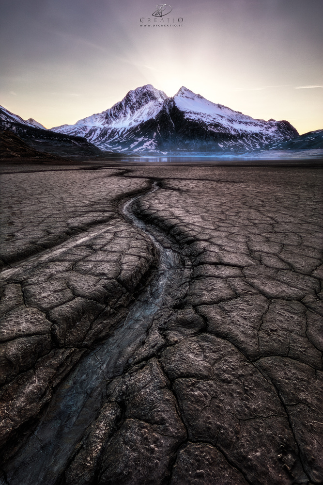 Kingdom of mud III by Duilio Fiorille