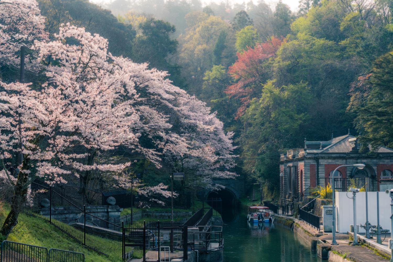 Spring's haze by Kazuya Shimizu