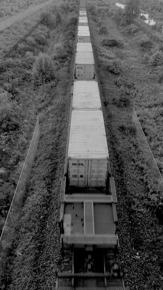 Motionless Train by Natalia Sadowski
