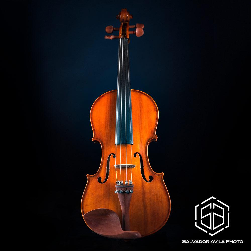 The Violin by Salvador Avila