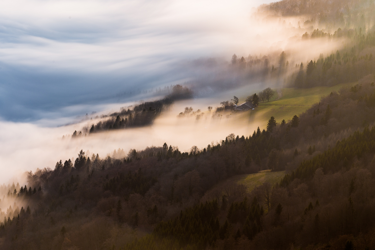 the farm in the fog by Alexandre Lachausse