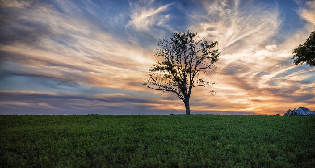 Kentucky Sunset by Richard Johnson