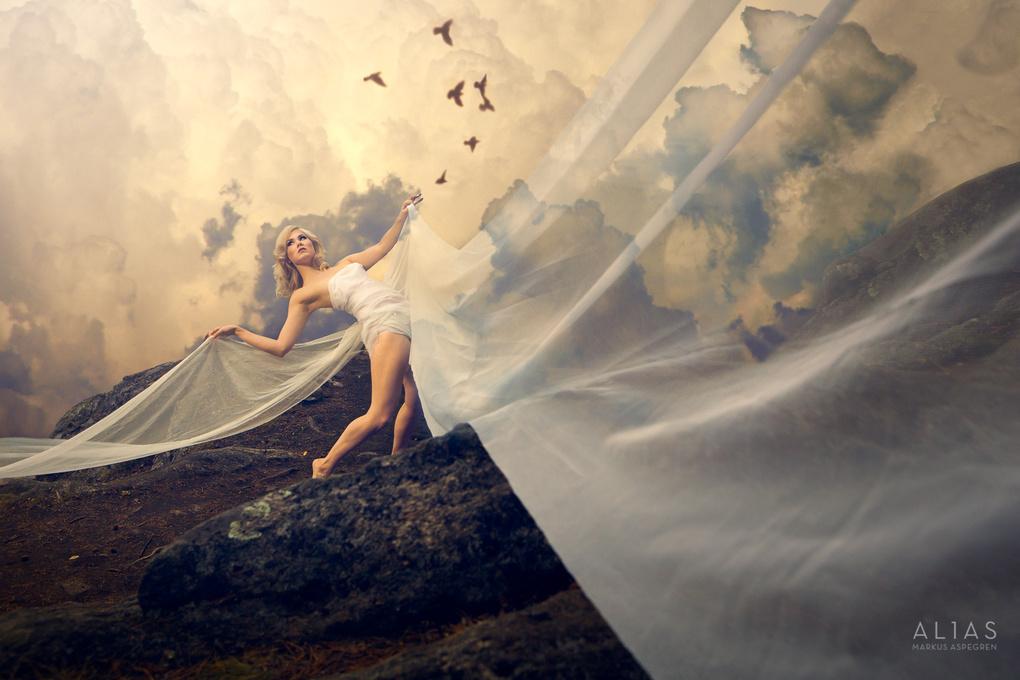 Dream Dance by Markus Aspegren