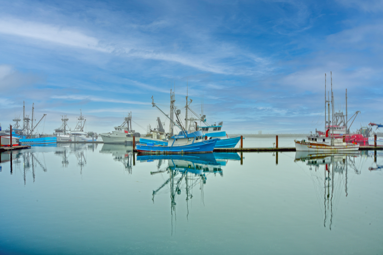 Newport Oregon Dock % by Leroy Brown